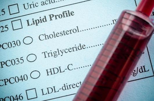 Triglycérides élevées